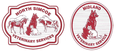 North Simcoe Veterinary Services